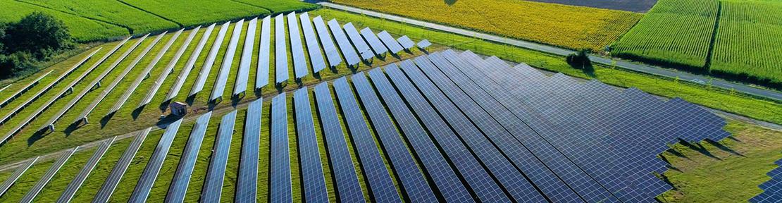 Solar Farms In New Zealand
