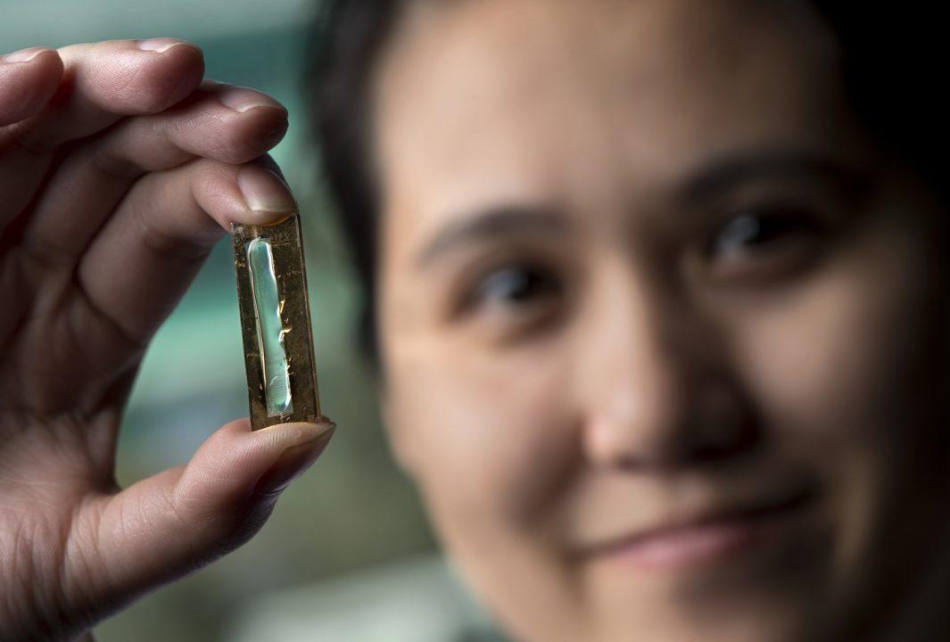Everlasting Batteries Thanks to Nano Technology