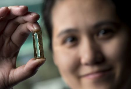 Everlasting Batteries Thanks to Nano Technology
